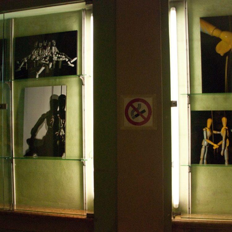 Same Skin, con Tiziano Ganapini, libreria TempoLibro, RE