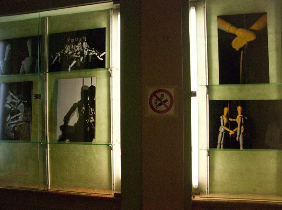 Same Skin, with Tiziano Ganapini, TempoLibro book shop,  Reggio Emilia